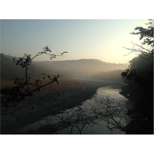 Corbett Sunrise