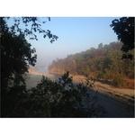 Morning at Ramganga