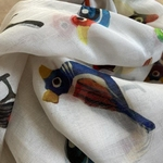 SCARF CHANDERI - Varanasi Birds