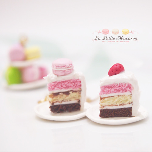 Miniature Food Jewelry - Earrings Macaron match with a slice of Cake