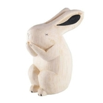 Polepole Rabbit
