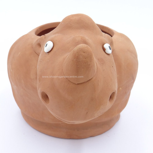 Terracotta clay pot - Rhino
