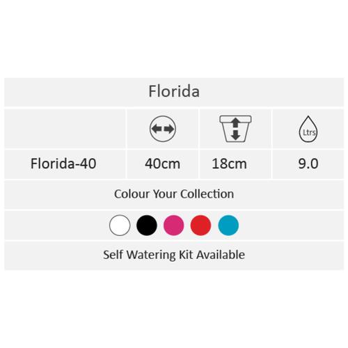 Florida Black