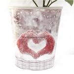 "Poinsettia in ""Christmas love"" pot"