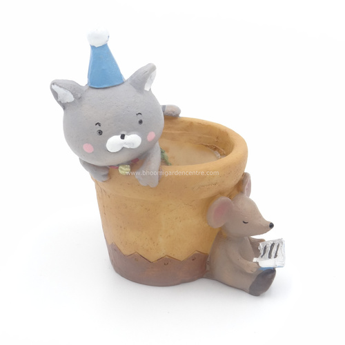 Catty ratty on a pot