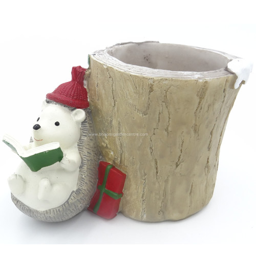 Hedge hog gnome santa at tree trunk