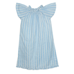 French blue night dress