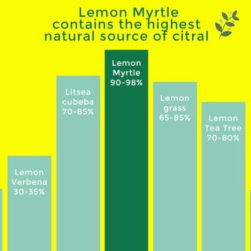 Australian Lemon Myrtle Tea