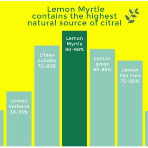 Australian Lemon Myrtle Tea Bulk Bag