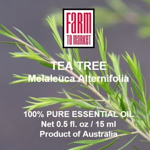 Tea Tree 100 Pure Essential Oil - 100 Pure