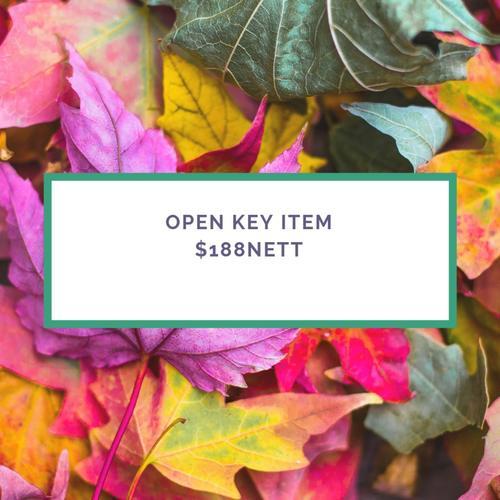 OPEN KEY ITEM188
