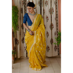 Handloom & Hand embroidered  chikankari tissue chanderi silk saree.