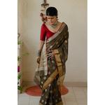 Handloom soft resham  chanderi silk  saree  with zari motifs