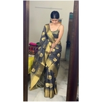 Handwoven chanderi silk saree with gold border and meenakari motifs