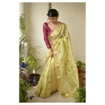 Handwoven Chanderi Pattu silk saree with  silk  thread flower motif and silk border
