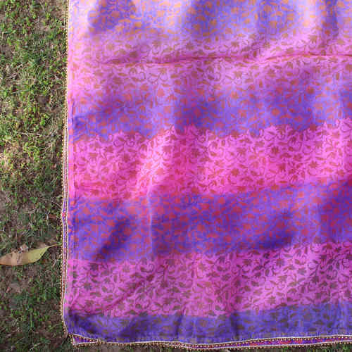 Pink Blue Printed Multi Colored Silk Chanderi Dupatta/Odhini