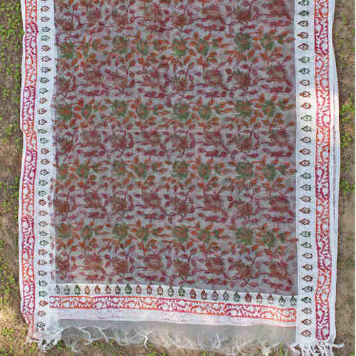 Red Green Silk Organza Handloom Block Printed Stole/Dupatta