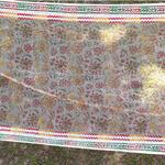 Silk Organza Handloom Block Printed StoleDupatta