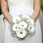 Bridal party package                                                                                                      Gerbera theme