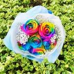 Rainbow Rose Ecuador