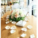 ROM  Solemnization Package 1                                                                          Rose Theme
