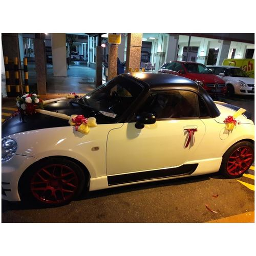 Wedding Car Décor Package 1  Silk + Fresh Florals