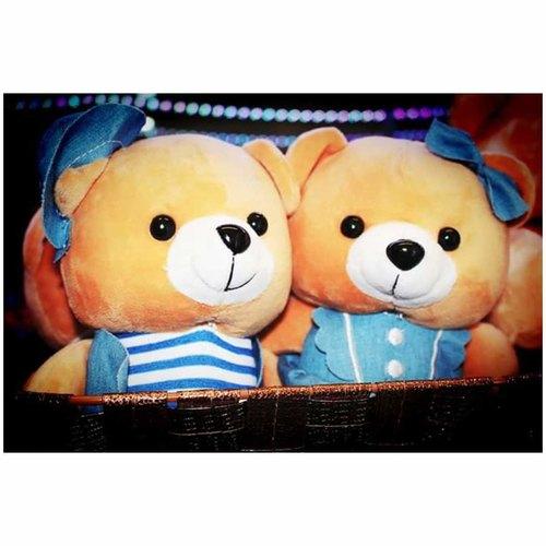 Couple Teddy