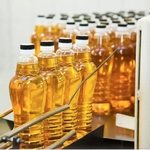 100 Organic Mustard Oil