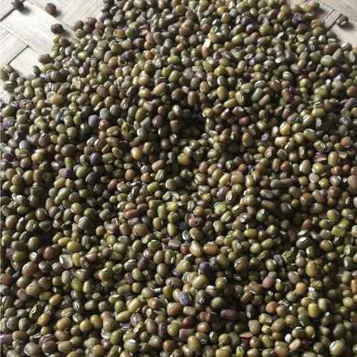 Yellow Lentil    - 100 Organic