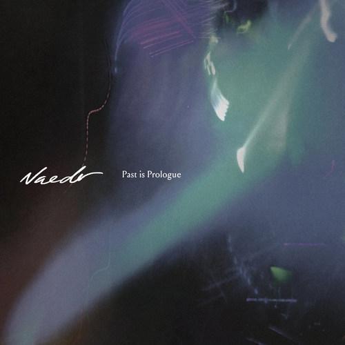 NAEDR - Past Is Prologue LP (Colour Vinyl)