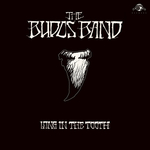 BUDOS BAND, THE - Long In The Tooth LP
