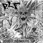 IN DISGUSTPLF - Split LP