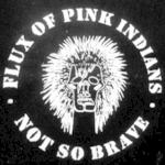 FLUX OF PINK INDIANS - Not So Brave LP