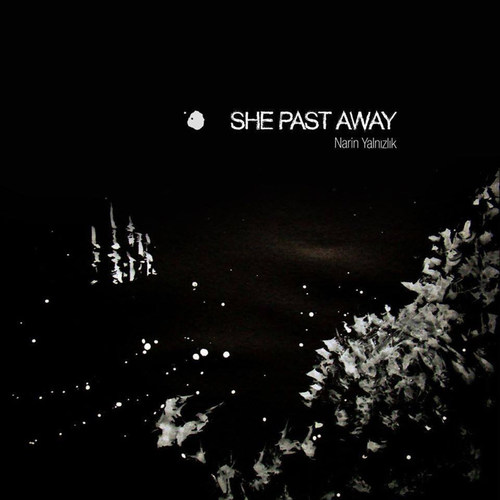 SHE PAST AWAY - Narin Yalnizlik LP