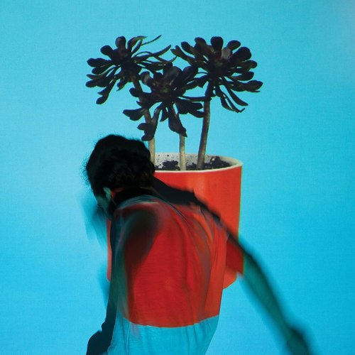 LOCAL NATIVES - Sunlit Youth LP