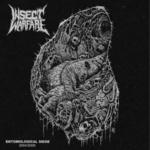 INSECT WARFARE - Entomological Siege 3xLP + DVD Black vinyl
