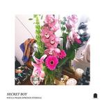 WICCA PHASE SPRINGS ETERNAL - Secret Boy LP