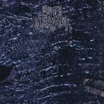 METH DRINKER - Oil LP