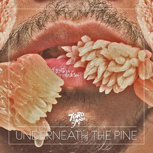TORO Y MOI - Underneath The Pine LP