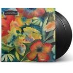 ADRIANNE LENKER - Songs And Instrumentals 2xLP