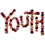 CITIZEN - Youth LP Colour Vinyl