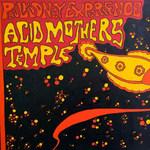 ACID MOTHERS TEMPLE  PAUL KIDNEY EXPERIENCE - ACID MOTHERS TEMPLE  PAUL KIDNEY EXPERIENCE LP