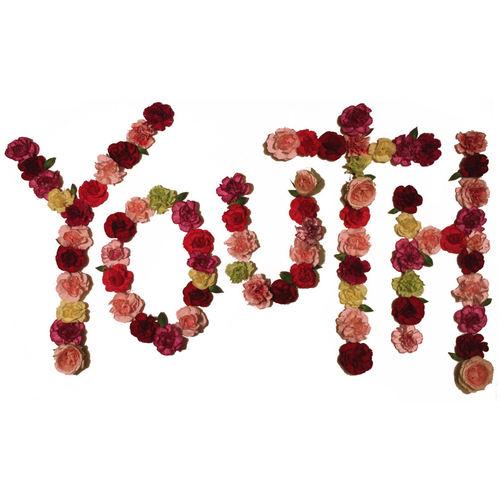 CITIZEN - Youth LP (Red Vinyl)