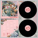 WILD CAT STRIKE - Rhubarb Nostalgia LP