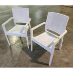 2 x LORRAINE Outdoor Arm Chair in WHITE