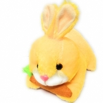 Rbotronics Cute Bunny with Carrot