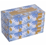 Fortune Facial Tissue Box (Standard) 100 pulls (Pack)