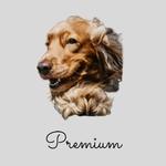 PREMIUM 1 Month Subscription Plan (26kg to 34kg)