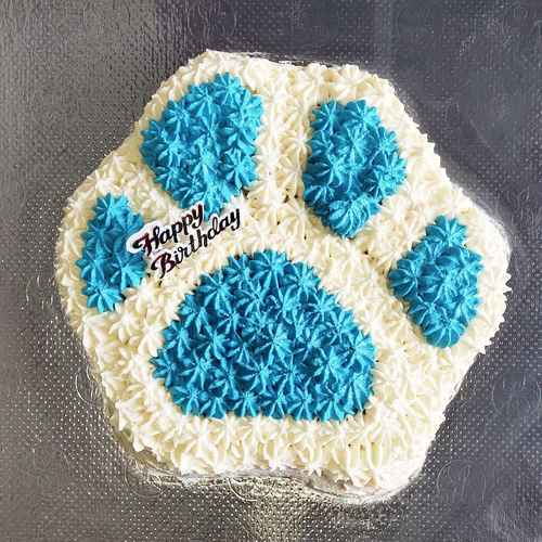 Cottage Cheese Paw Cake
