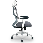 Ergonomic Office Chair PlushW-HB